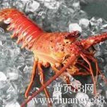 青岛上海进口海鲜找哪家报关行